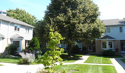 northbrook_village_coop_london_courtyard_small